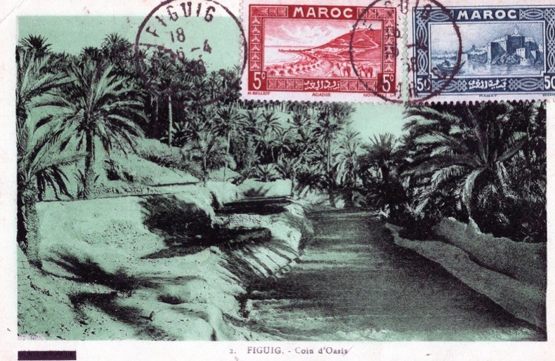 FIGUIG , coin d'oasis, . Albert