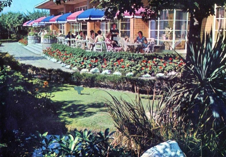 LONDON, Kesington, Woodland garden and sun pavilion restaurant .. Angleterre