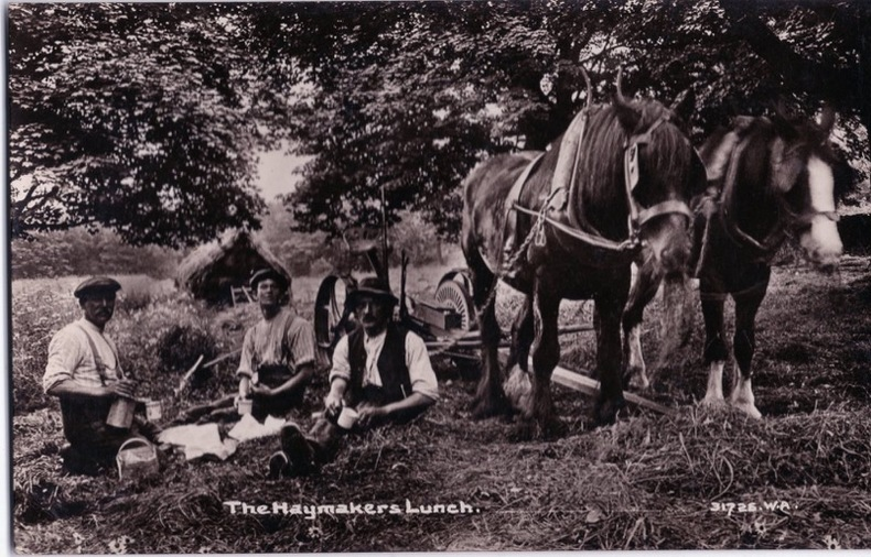 THE HAYMAKERS LUNCH . Angleterre