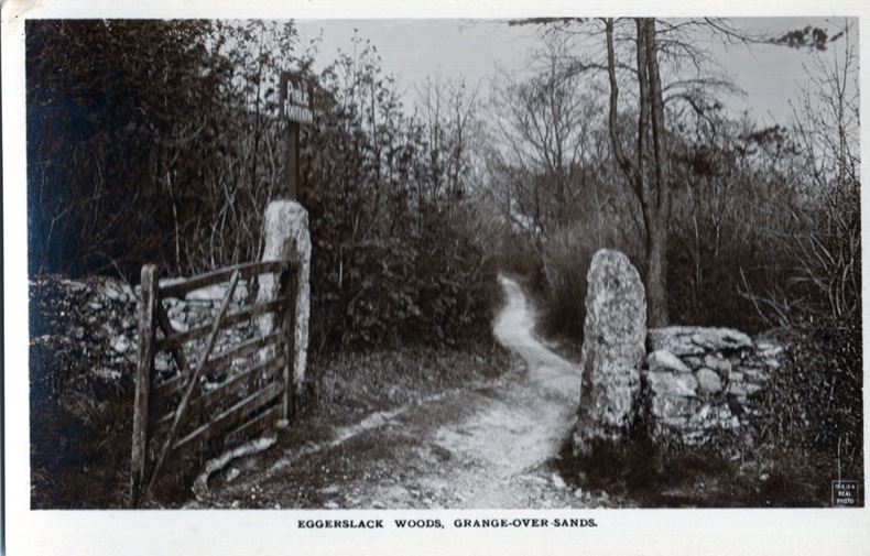 Grange-over-sands, Eggerslack Woods, . Angleterre