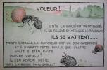 La vie des bêtes. Le Papillon. Le Grillon. Le Bousier. Les Fourmis. Texte de Marie Bolene. Compositions de C. Aman-Jean.. BOLENE (Marie).
