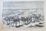 ISMAILIA. BAKER SAMUEL WHITE