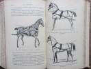 Elevage et dressage du cheval. Troisième édition avec figures intercalées dans le texte.. Georges Bonnefont