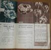 """""""Catalogue A. J. Van Engelen""""."""
