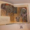 Dumbo, Illustrations de Walt Disney, Hachette. 1947.. WALT DISNEY