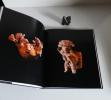 Équateur. La terre et l'or. Lausanne. 25 octobre 1991- 26 janvier 1992. Fondation de l'Ermirage / Bibliothèque des arts. 1991.. FONDATION DE ...