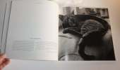Les chats. Photographies et poèmes. Bibliothèque de l'image. 1996.. COLLECTIF