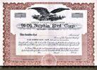[Certificat d'actions, USA]. - 91-06 Sutphin Blvd. Corp...