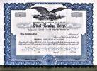 [Certificat d'actions, USA]. - Direl Realty Corp...