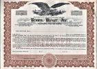[Certificat d'actions, USA]. - Brown Wiener, Inc...