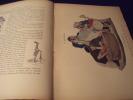 L'Art De La Caricature .. Alexandre Arsène .
