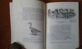 Le monde merveilleux des bêtes - Livre quatrième. Canards sauvages et autres Palmipèdes - Tome 1 : Les Lamellirostres . OBERTHUR Joseph
