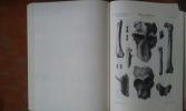Les animaux pliocènes du Roussillon . DEPERET Charles - DONNEZAN Albert