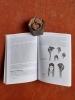 Des Européennes au Sahara du XIXe siècle aux Indépendances . VERITE Monique - HERVE Patrick (sous la direction de)