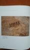San - Art rupestre d'Afrique australe. EGO Renaud
