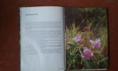 Flore de Guyane . DELABERGERIE Guy