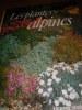 LES PLANTES ALPINES. BLOOM ALAN
