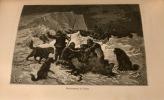 L'expédition de Tegetthoff. Voyage de découvertes aux 80e-83e degrés de latitude nord. Traduit de l'allemand... par M. Jules Gourdault, et contenant ...