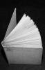 James Ensor dans les collections privées II. Tricot, Xavier (préface)
