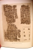 The Edwin Smith Surgical Papyrus. Published in facsimile and hieroglyphic transliteration with translation and commentary.... Edwin Smith Surgical ...