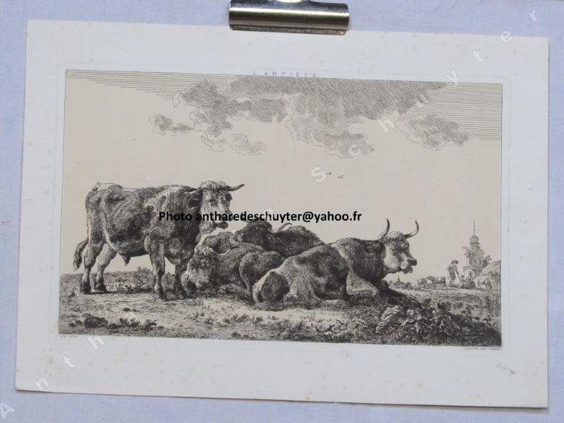 VACHES ET TAUREAU. J.B. DE ROY (1784-1862)