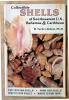 Collectible Shells of Southeastern U.S. Bahamas & Caribbean.. Tucker Abbott (R. Ph. D.).