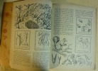 L'ENCYCLOPEDIE PAR LE TIMBRE - LES SECRETS DE LA VIE     --. WALT DISNEY - ADAPTE par R. PLATT / ILLUSTRATIONS de T. CHAIKO