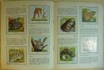 L'ENCYCLOPEDIE PAR LE TIMBRE - BEBES ANIMAUX SAUVAGES    --.  ILLUSTRATIONS EN COULEURS de F. ROJANKOVSKY, DESSINS EN NOIR de R. MASSON