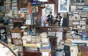 le chat qui souris livre rare book. Black Bedroom Furniture Sets. Home Design Ideas