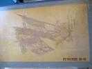 Militaria - Livre d'or des 69e, 269e régiments d'infanterie et 42e R. I. du  Capitaine Sauvageot. Émile-Jean-Baptiste Sauvageot , Capitaine