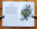Miroir des oiseaux. . Gould John, Junod R. L. (intro.):