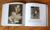 Botanica. Photographies de végétaux aux XIXe et XXe siècles. .
