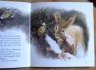 La petite Poucette. . Andersen, Durand Paul (ill.):