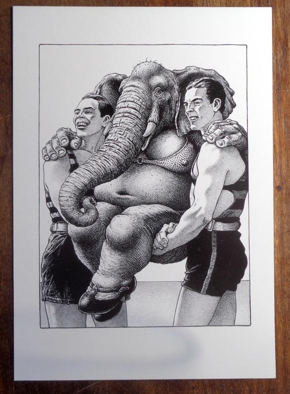 Elephant Woman. . Solé: