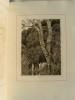 Héro et Léandre. Poème dramatique en 3 actes illustré par A.-E. Marty.. HARAUCOURT Edmond.