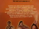 L'encyclopédie du catch   Tout savoir de A comme argent à W comme WWE             .