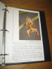 Atlas des insectes. Tome II. Les papillons. . Manuel (Jean) & Coutin (Rémi)