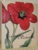 Le Jardin d'Eichstätt. L'Herbier de Basilius Besler. Introduction de Klaus Walter Littger et analyse botanique de Werner Dressendörfer..