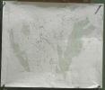 Commune de Attalens. Plan d'ensemble. Levé par L. Genoud. Carte topographique 5:000. Format 89x59.5cm..