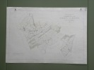Commune de St-Martin - La Rougère. Plan d'ensemble. Levé par L. Genoud. Carte topographique 5:000. Format 100x70cm ..