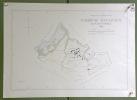 Commune de Autavaux. Plan d'ensemble.  Levé par G. Pillonel. Carte topographique 5:000. Format 50x70cm..