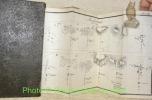 Feld-Instruktion für die Infanterie, Kavallerie und Artillerie. Mit 8 Plänen. Zweite Auflage..