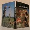 Animaux des Indes. Photographies de l'auteur.. YLLA.