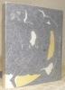 Hans Erni. Avec une biographie, une bibliographie et une documentation complète sur le peintre et son oeuvre. 3e Edition revue et augmentée. ...