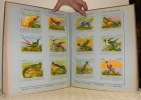 Biscuits et Chocolats Victoria, S. A. Bruxelles. Collection Scientifique. Sciences naturelles: Le règne animal. Wetenschappelijke Verzameling. ...