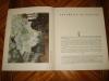 Claude MONET. Drogues et peintures. Album d'art rétrospectif.. FOUGERAT (Emmanuel)
