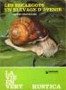Les Escargots Un Élevage D'avenir . CHEVALLIER Henry