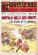 Evil Spirit , Le Sorcier Des Comanches . N° 141 . Buffalo Bill's Red Enemy or the Wizard of  the Comanches . CODY W.-F. Colonel ,  Dit BUFFALO BILL
