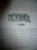 Des Déviations des Arcades Dentaires et de leur Traitement Rationnel. Docteur Gaillard  (Georges)