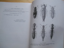 Les Staphylinidae du Chili. 